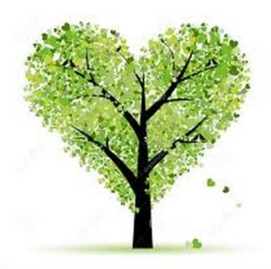 arborist blog